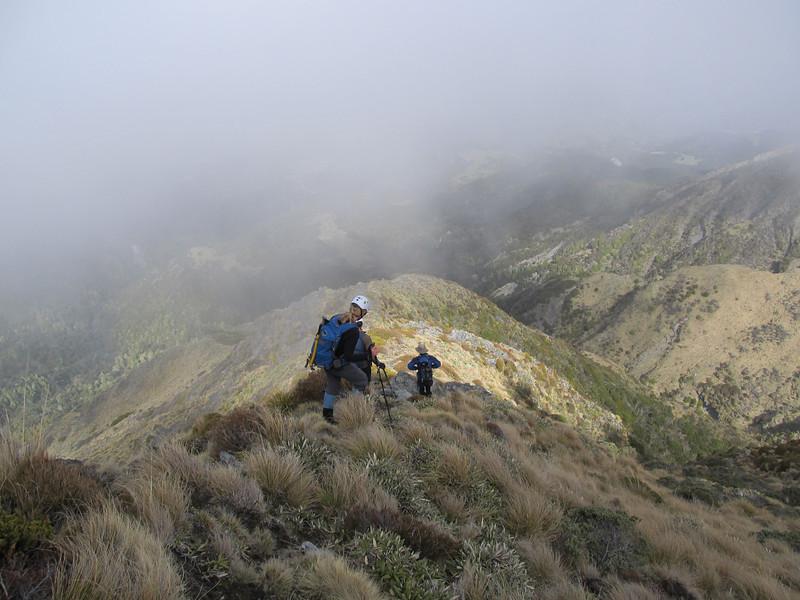 Descending Totaranui Spur.