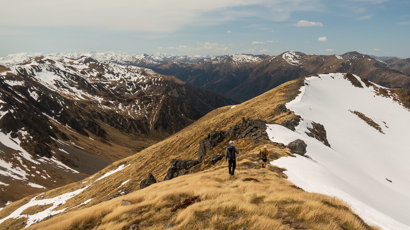 Along the spur leading to Boyle Flat Hut.