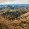 ...while I crouched down behind some tussock looking towards the Hurunui.