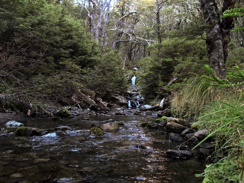 Lees Creek.