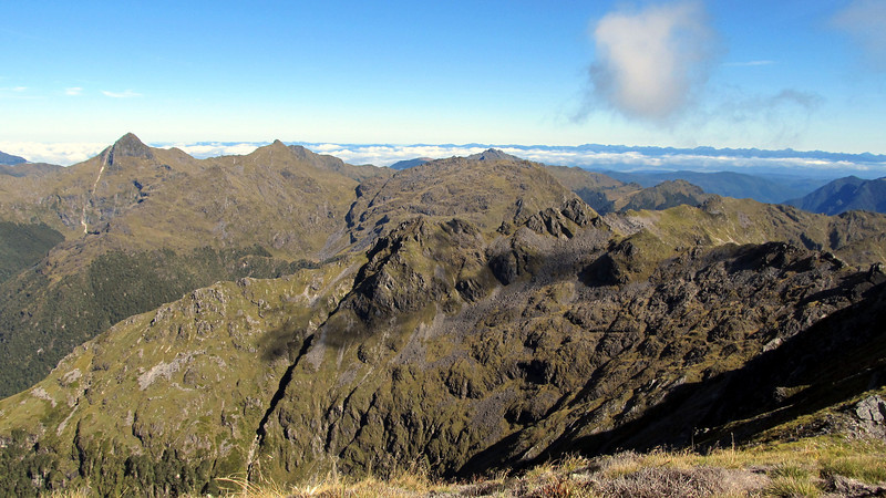 Looking towards Mt Puttick and Mt Hunter.