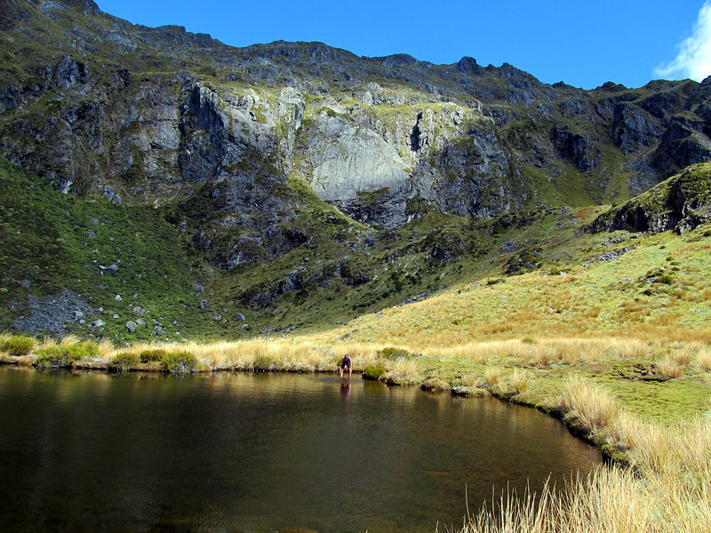 Tarn at the head of Lock Stream, Mt Kemp above.