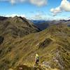 On the ridge west of Mt Haast.