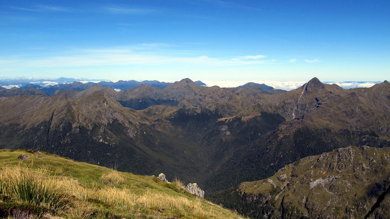 Looking south across the Brown Grey River, Arthur's Pass peaks in the distance on the left, Mt Puttick on the right.