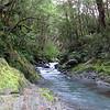Lovely little Pell Stream gorge.