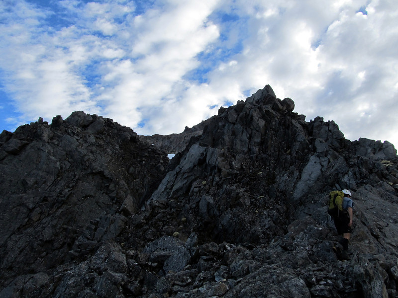 On the south ridge of Mt Travers.