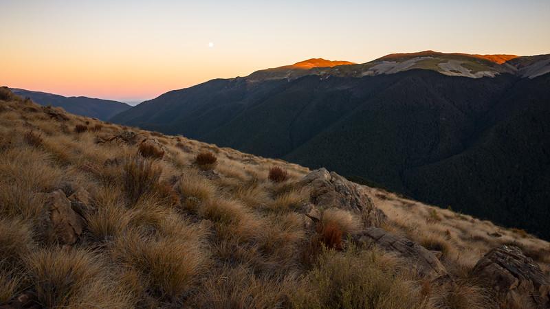 Sunrise on the Gordon Range.