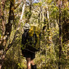 Bashing up to Pt 1326 m through dense and tangled bush.