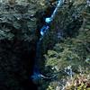 Waterfall in Kakapo Stream.