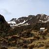 Pinnacle Biv with Genoa Peak above.