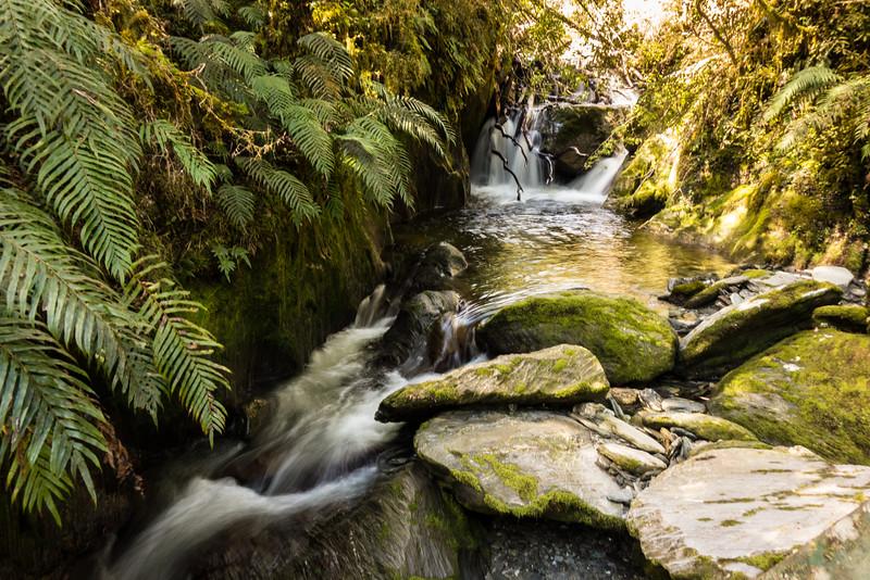Side stream of Frew Creek.