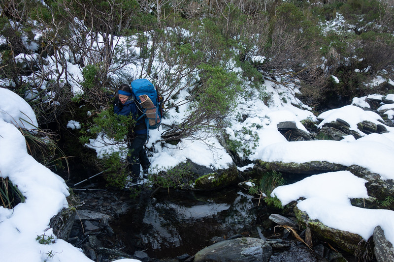Negotiating a little scrub in the basin above Isobel Falls (photo - James Thornton).