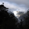 Franz Josef Glacier from the Alex Knob track.