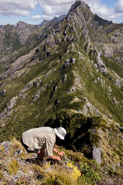 Getting off Einstein required lowering packs, Mt Mendel above.