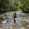 Finally in Sirdar Creek.
