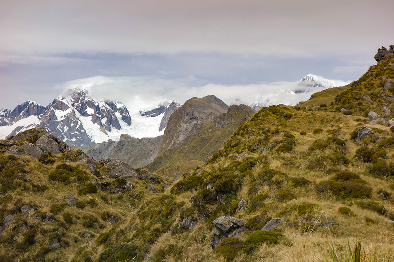 Mt Tasman and Cook.