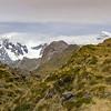 Mt Tasman and Cook.