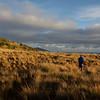 Beautiful morning at Newton Range Biv.