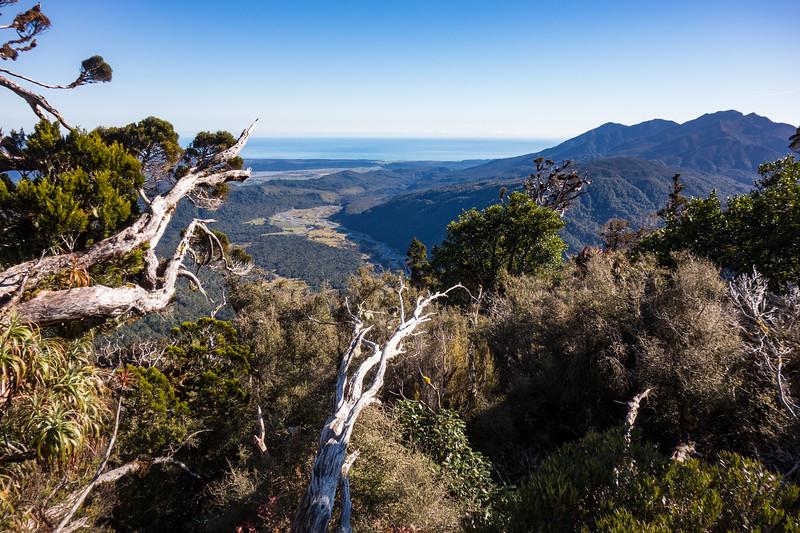Down to the Kakapotahi.