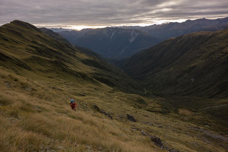 Climbing out of Scottys Creek back onto the Tara Tama Range (photo - James Thornton).