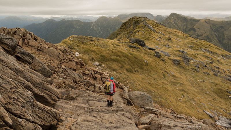 Ultramafic band on Mt Griffin. We're headed for the peak in the distance on the right (Pt 1572m.)