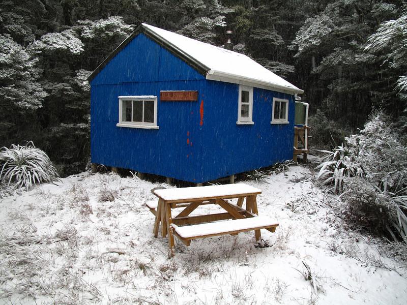 Blue Range Hut on the Kiriwhakapapa to Cow Creek Hut Track.