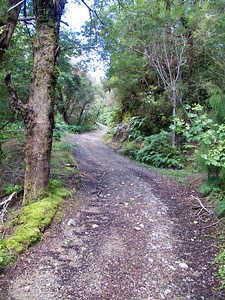 IMG_3022 Climbing the Eastern Hutt River Track Sep 2012