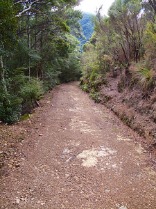 IMG_3043 On the Descent to Eastern Hutt River | Hutt Forks (1)