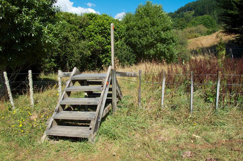 First steps Kapakapanui Track Mar 2013
