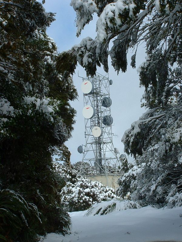 The BCL or Broadcast Communications Ltd (BCL) television transmission tower at the 'first' summit of Mt Climie. You climb up the very steep track for an hour surrounded by thick bush then suddenly you break out into the open (at the tower) only to find that the track goes on along the ridge for another 10 - 15 minutes.<br /> <br /> 26 August 2004