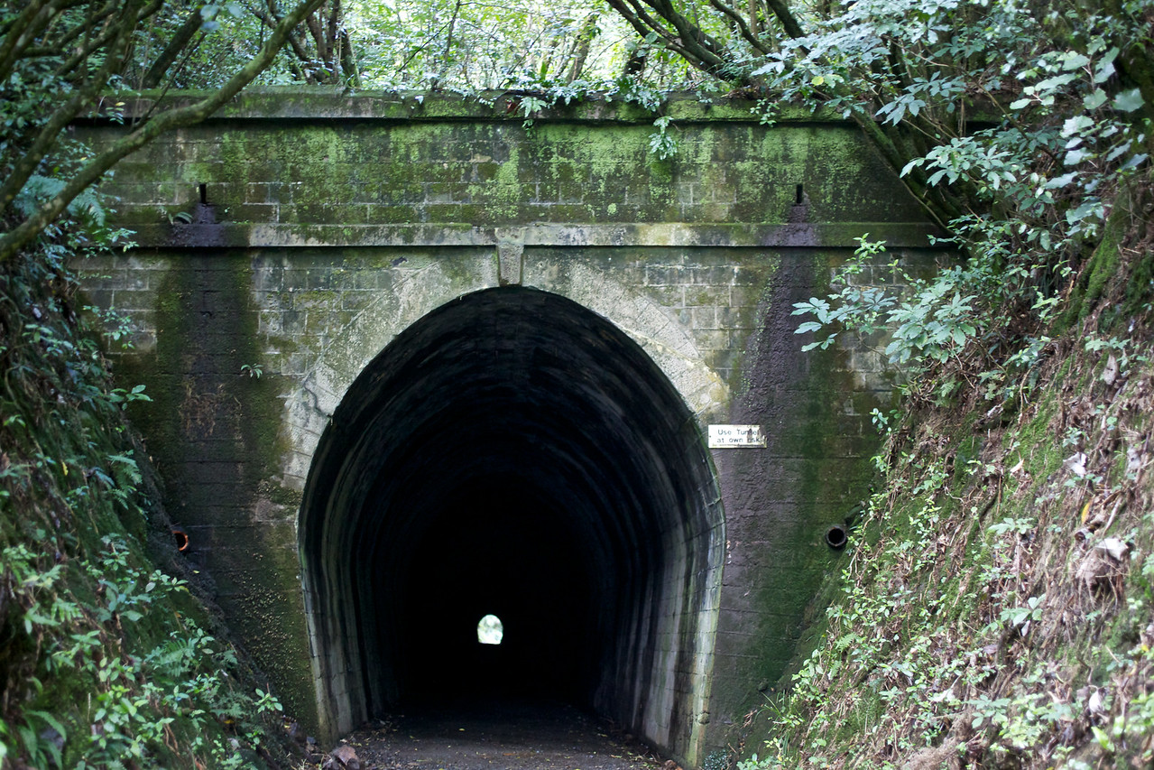 Tunnel, Tunnel Gully Upper Hutt Apr 2011