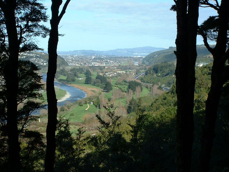 Power Pylon Walk with Lower Hutt and Wellington Harbour in the very far distance.