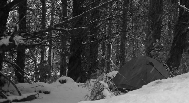 Snow Keith George Memorial Park, Upper Hutt 2011