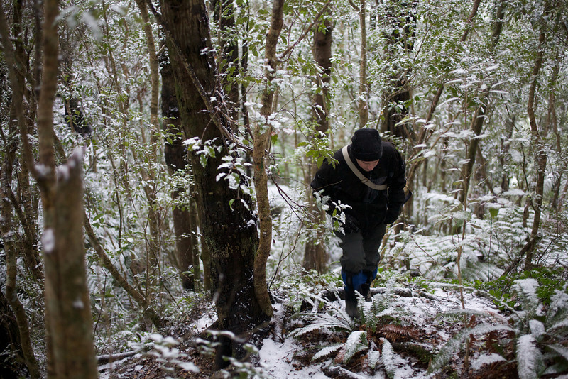 Will on the Keith George Memorial Park Track, Upper Hutt Snow Aug 2011
