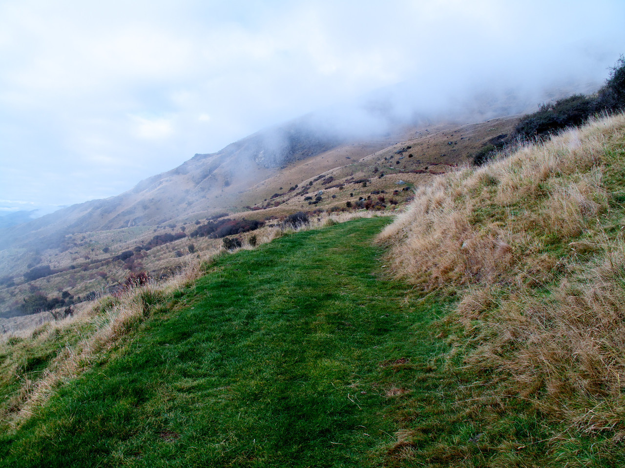 More easy grassy climbing on Roys Peak Track