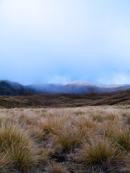 Looking up towards the Summit of Roys Peak