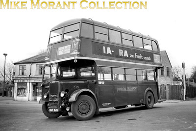London Transport 'Park Royal' Daimler bus no. D201, registration HGF 878, operating route 80 to Tooting Broadway from the California bus stand at Belmont. This shot was taken in 1952/3 but it isn't narrowed down to a specific day. [Mike Morant collection]