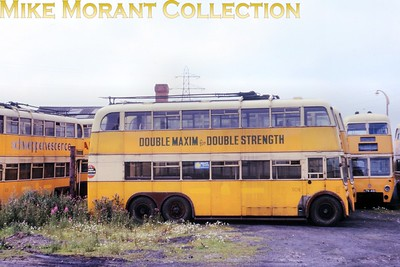 Newcastle trolleybus no. 508. Kodachrome undated. [Mike Morant collection]