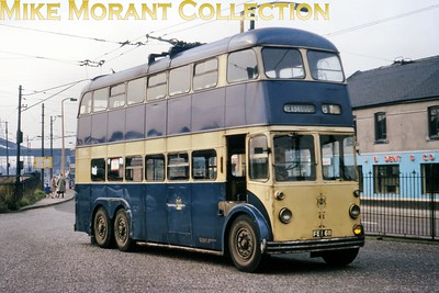 Trams, buses trolleys