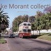 Johannesburg, South Africa, trolleybus dated 25/10/77<br> Sunbeam IV 1959<br> Fleet no. 695<br> Dunkeld route 2A<br> [<i>Mike Morant collection</i>]