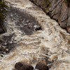 Firehole River Rapids