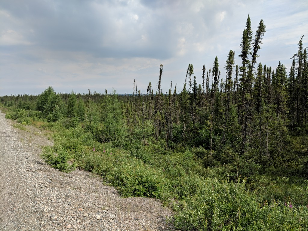 Riding the Most Remote Road in North America, Trans Taiga Rd IMG_20180719_094508-XL