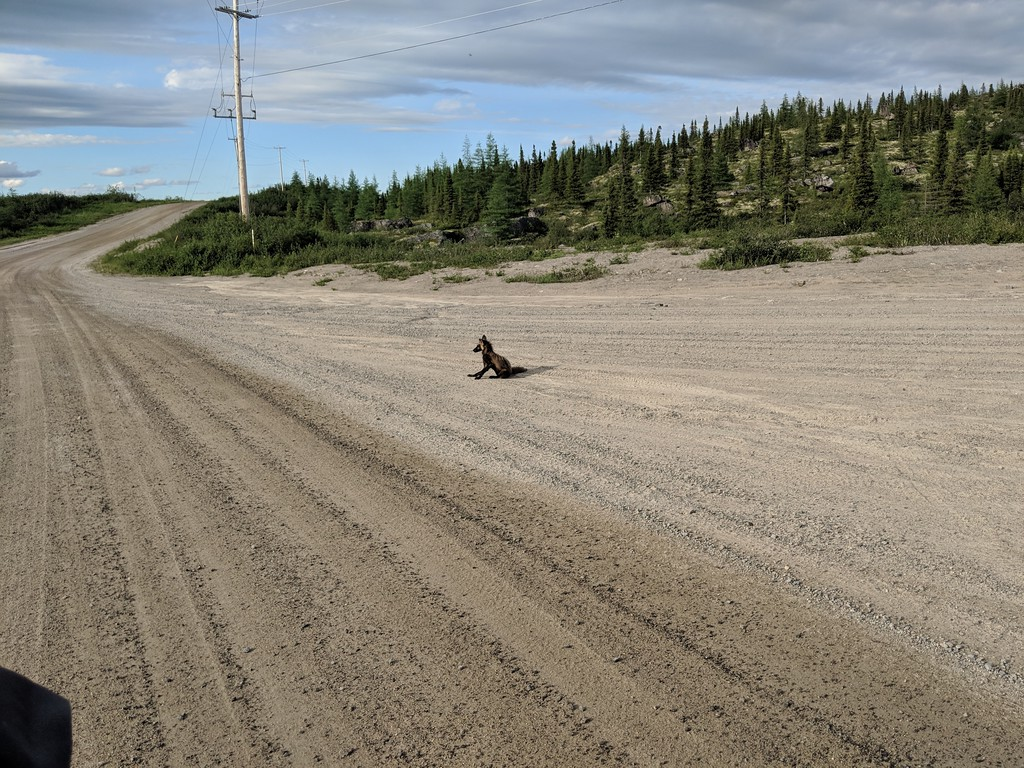 Riding the Most Remote Road in North America, Trans Taiga Rd IMG_20180721_175955-XL