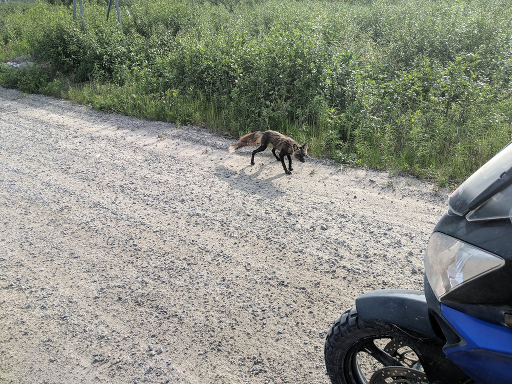 Riding the Most Remote Road in North America, Trans Taiga Rd IMG_20180721_175936-XL