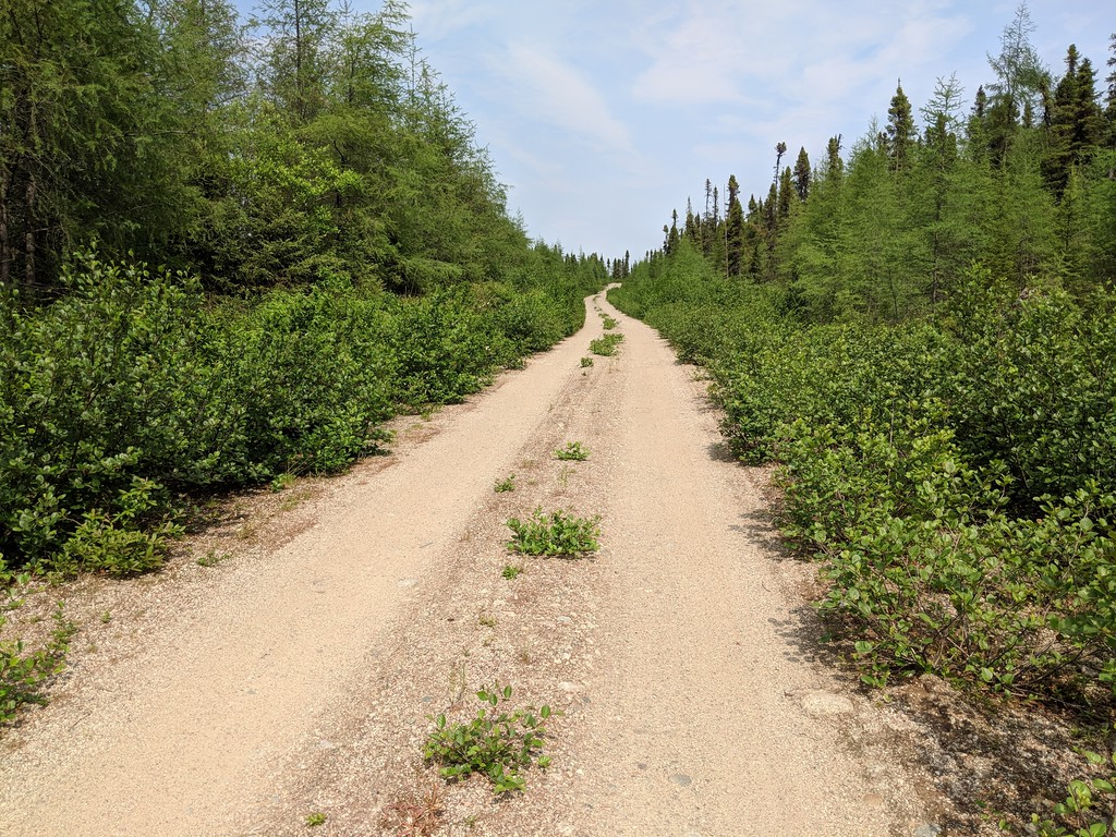 Riding the Most Remote Road in North America, Trans Taiga Rd IMG_20180722_142039-XL