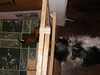 20091225-075131dscf6973_4638947820_o