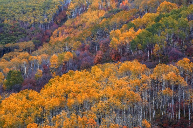 """""""Autumn Afghan"""""""