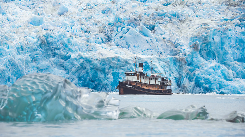 Instead of an Antarctic cruise, explore ice, wildlife and the Tongass Rainforest in Alaska.