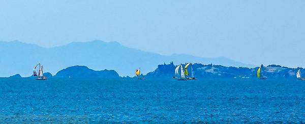 Cruising Race to Kawau Island