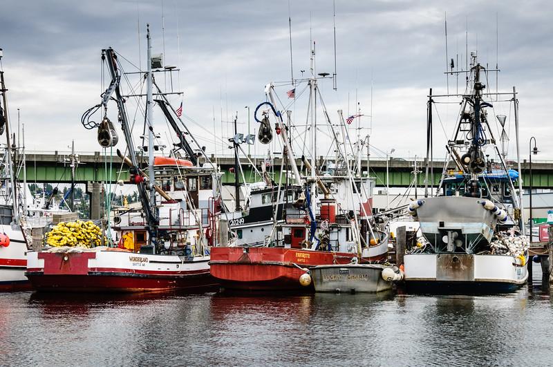 Fishing Boats, Fishermen's Terminal, Seattle, Washington